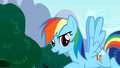 "Rainbow Dash ""What have we learned"" S01E16.png"