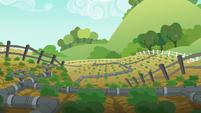 Applejack's vegetable patch S6E10