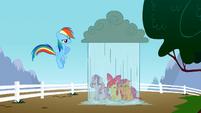 Rainbow Dash dropping rain on the CMC S2E23