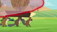 Beaver leaving the dome S3E05