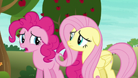 "Pinkie ""hoping you saw something I didn't"" S6E18"