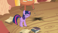 Future Twilight disappeared S2E20.png