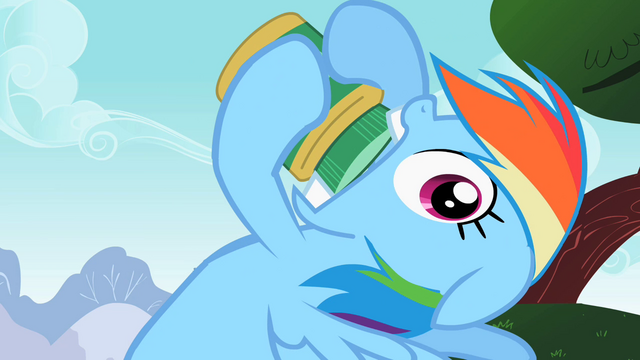 File:Rainbow Dash realize S2E8.png