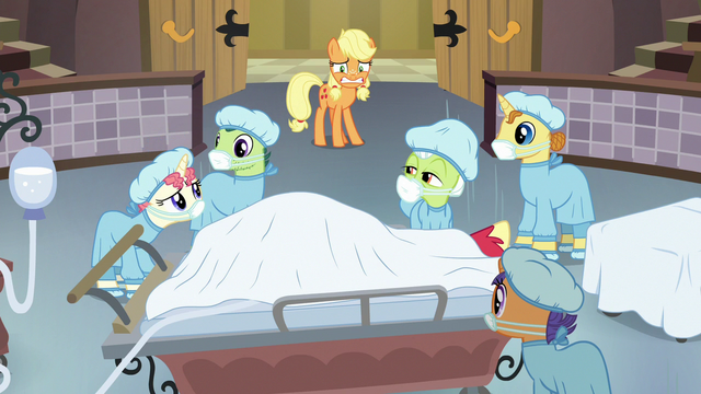 """File:Masked Nurse """"did you say 'prune them branches'?"""" S6E23.png"""