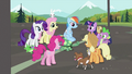 Rainbow Dash's friends gathering around Rainbow Dash and Tank S2E07.png