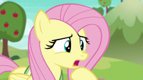 "Fluttershy ""that ball moves pretty fast"" S6E18"