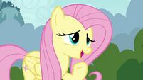 "Fluttershy suggests ""a special Breezie cheer"" S4E16"
