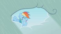 Rainbow Dash embarrassed laugh S1E03