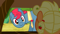 Smiling at filly Applejack S3E8