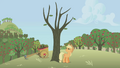 Applejack hitting a dead tree S01E04.png