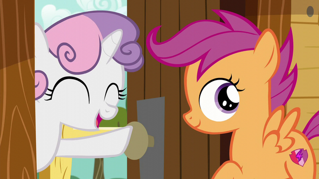 "File:Sweetie Belle ""You'll find something!"" S6E4.png"