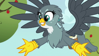 "Gabby ""anygriffon has ever been about anything!"" S6E19"