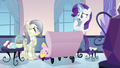 Rarity was optional S3E12.png