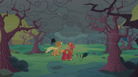 Applejack and Big McIntosh looking at dark clouds S2E12