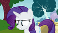 "Rarity ""I guess duty calls"" S7E6.png"