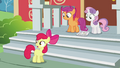 CMC On School Stoop S2E23.png