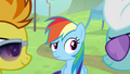 Spitfire and Fleetfoot looking at each other while Rainbow is looking at them S4E10.png