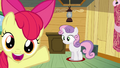 Apple Bloom pointing at Sweetie Belle standing S3E04.png
