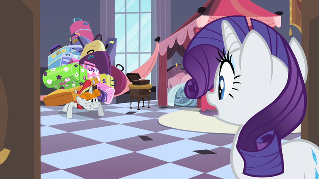 File:Bellhop asking Rarity where he should put her luggage S2E9.png