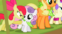 "Apple Bloom ""ONE! DAY! Good Luck!"" S2E5"