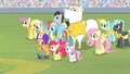 The Ponyville teams in the stadium S4E24.png