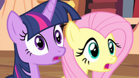 Twilight and Fluttershy looking S4E11