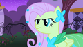 Fluttershy serious S01E26.png