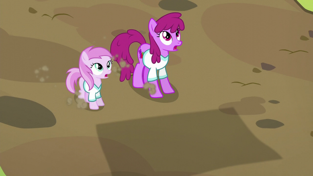 File:Berryshine and Pina Colada see incoming hay bale S5E17.png