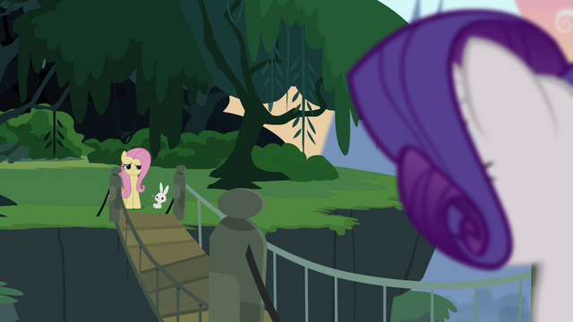 File:Fluttershy unsure of Rarity's request S4E03.png