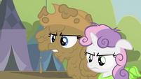 Rarity and Sweetie Belle together S2E05