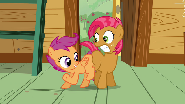 File:Scootaloo 'since you don't have a cutie mark'n'all' S3E04.png