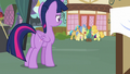Twilight sees ponies crowded around Fluttershy S7E14.png