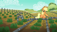 Applejack turns the second irrigation valve S6E10