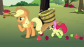 Apple Bloom tripping over fallen apples S7E9.png