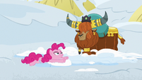 Pinkie Pie plopping down onto the snow S7E11