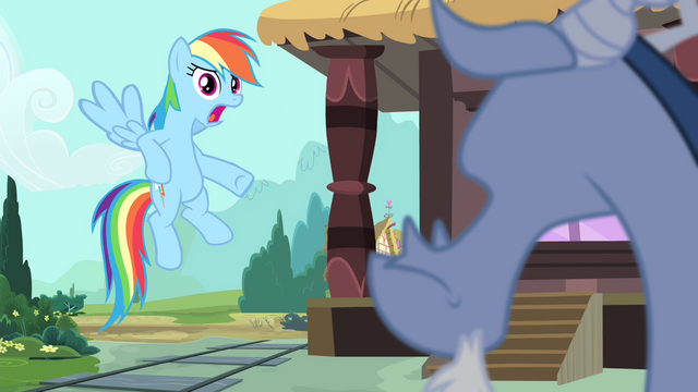 File:Rainbow 'and getting over your weird illness' S4E11.png