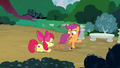 Apple Bloom and Scootaloo all out of ideas S7E6.png