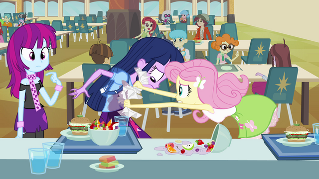 File:Fluttershy cleaning Twilight's shirt EG.png