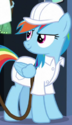 Rainbow Dash weather factory ID S5E5