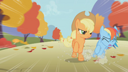 Applejack hits Rainbow Dash S01E13