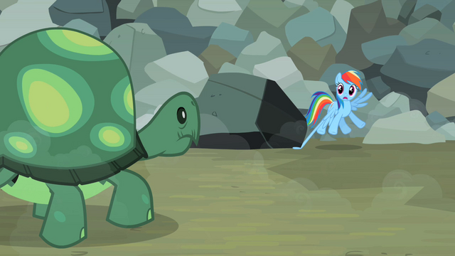 File:Rainbow Dash sees Tank coming S2E07.png