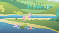 Fluttershy at the lake S1E05.png