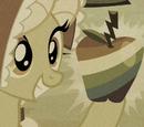 Buntäpfel
