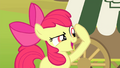 """Apple Bloom """"I know it!"""" S4E17.png"""