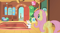 Fluttershy is late S1E22