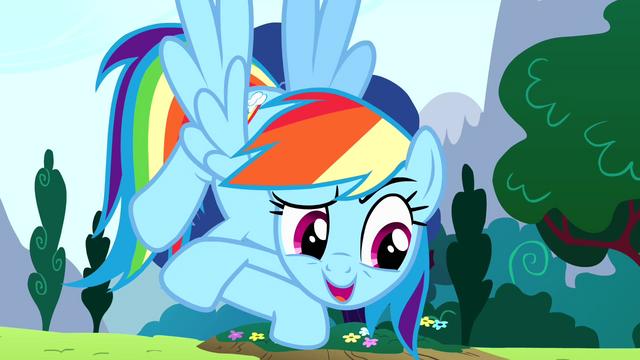 "File:Rainbow Dash ""it's my birth-iversary"" S4E12.png"
