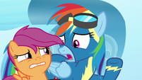 "Rainbow Dash ""not just shown up!"" S7E7"