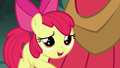 "Apple Bloom ""you've always been a hero to me"" S5E17.png"