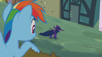 Rainbow Dash sees Mare Do Well walking S2E08