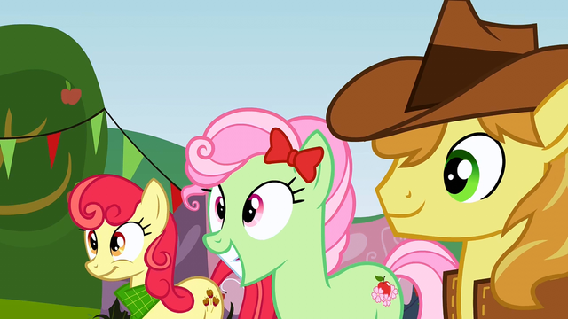 File:Everypony is excited S3E8.png